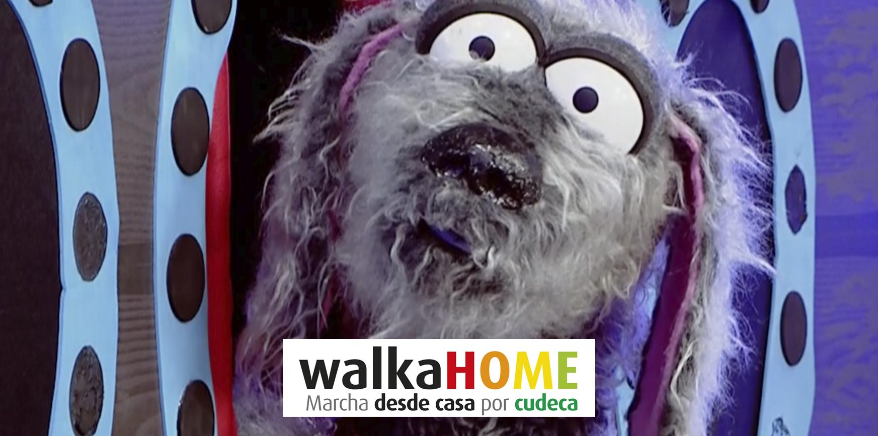 Más de 1.100 personas participaron el domingo en la marcha solidaria de Cudeca 'Walkahome'
