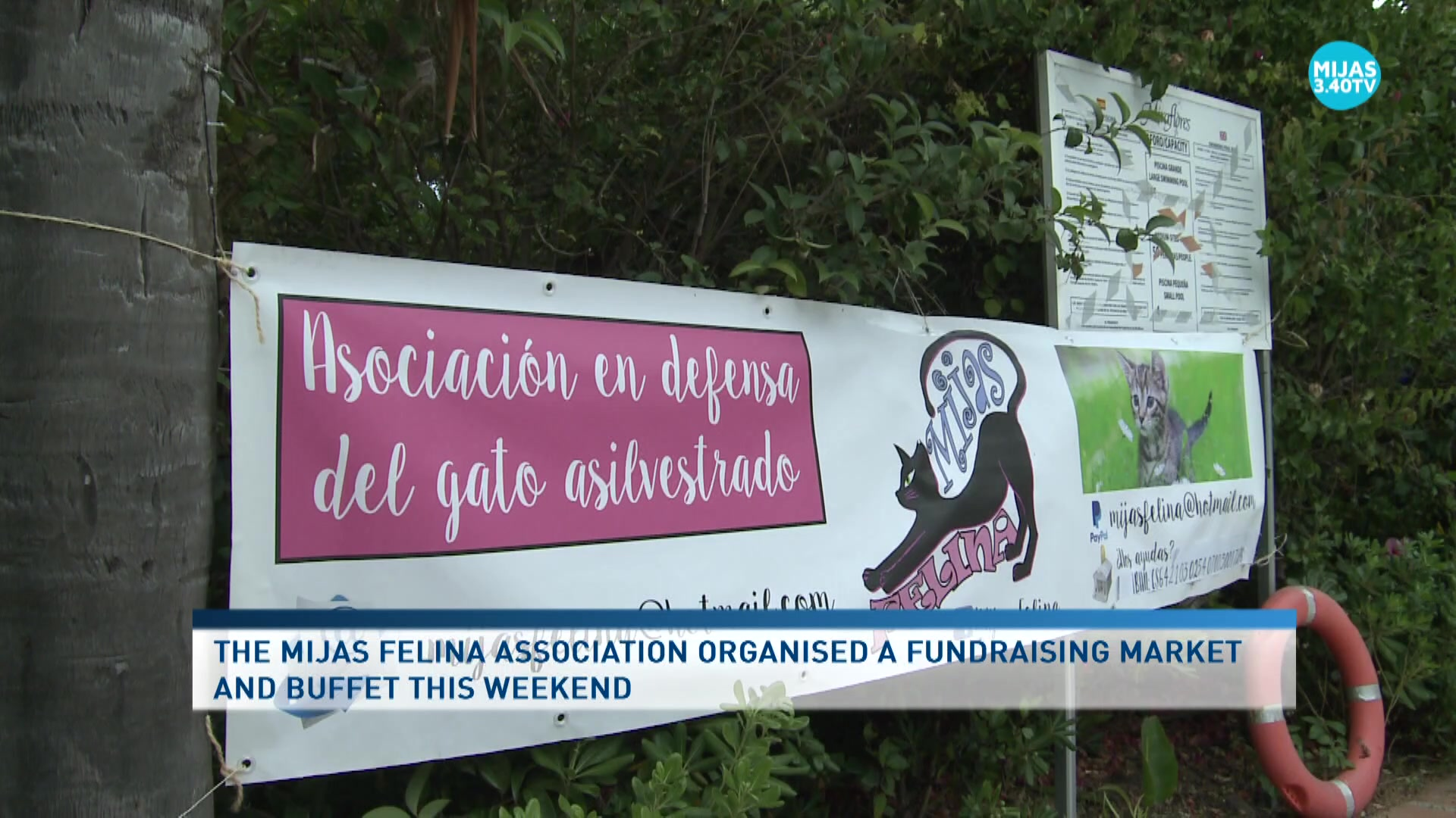Mijas Felina organised a new charity event to raise funds last weekend