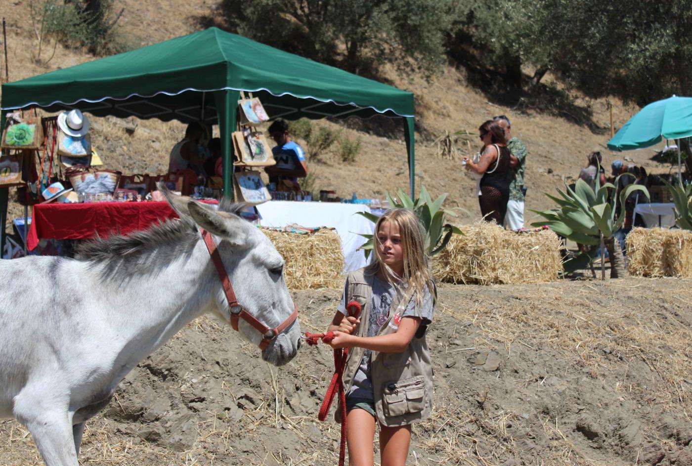 Donkey Dreamland acoge un mercadillo ecológico y 100% benéfico